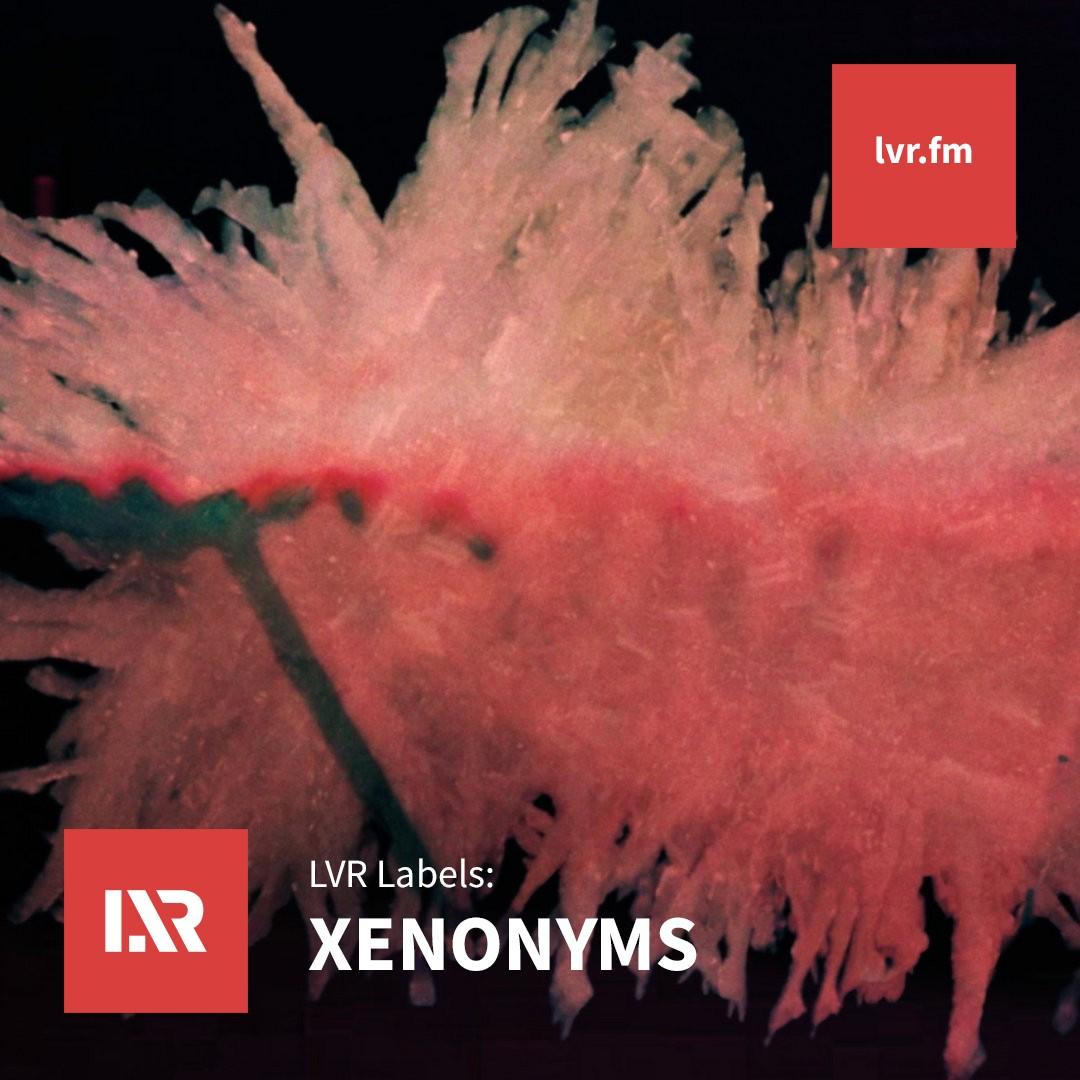 Xenonyms
